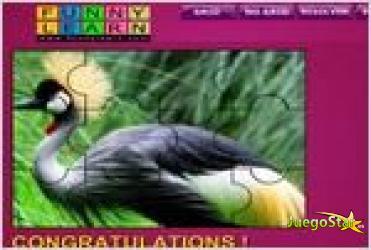 Juego  big magnificent bird puzzle rompecabezas de ave