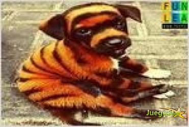 Juego  confused dog puzzle rompecabezas de perrito atigrado