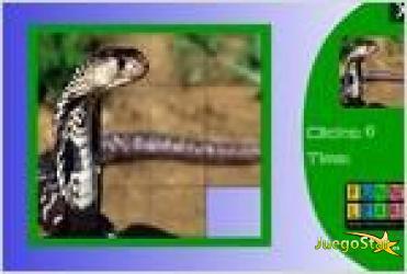 Juego  wild snake slide puzzle rompecabezas de serpiente salvaje