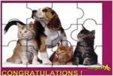 Juego  cute animals puzzle rompecabezas de animales