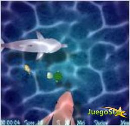 Juego  tortuga come peces