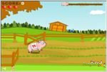 Juego  pig race carrera de cerdo